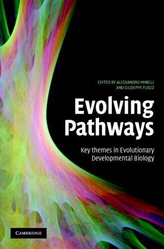 Evolving Pathways