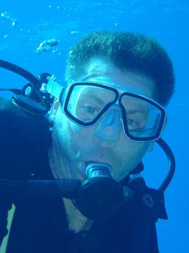 Red Sea Diver's Guide.