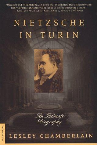 Download Nietzsche in Turin