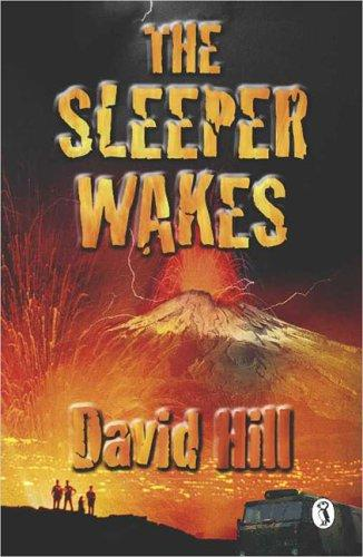 The sleeper wakes by Hill, David