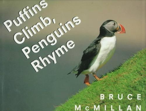 Puffins climb, penguins rhyme