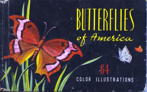 Butterflies and Moths of America