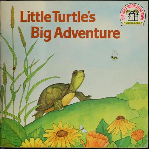 Little turtle's big adventure.