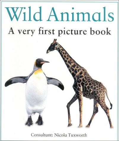 Very First Picture Book
