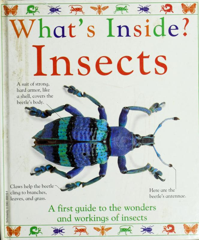 What's inside? insects by Angela Royston