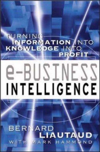 e-Business Intelligence by Bernard Liautaud