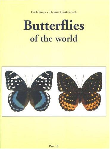 Butterflies Of The World (Nymphalidae VIII, Lexias) by Dirk Casteleyn