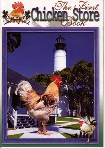 The First Chicken Store Book by Katha Sheehan