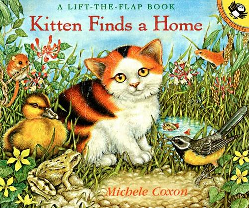 Kitten Finds a Home by Michele Coxon