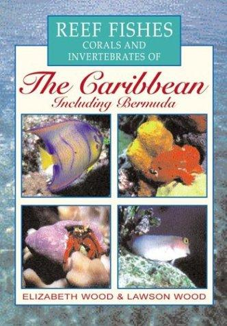 Reef fishes, corals, and invertebrates of the Caribbean by Wood, Elizabeth