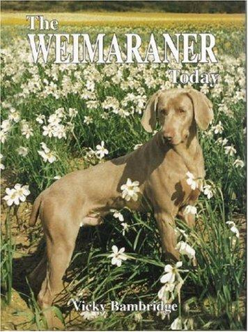 The Weimaraner Today (Book of the Breed) by Vicky Bambridge