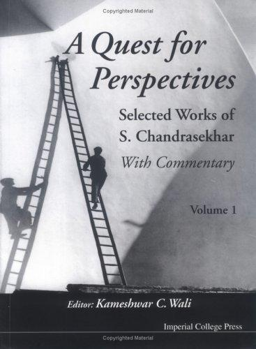 Quest For Perspectives by Kameshwar C. Wali