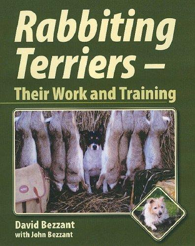 Rabbiting Terriers by David Bezzant, John Bezzant
