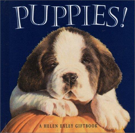 Puppies (Mini Squares) by Helen Exley