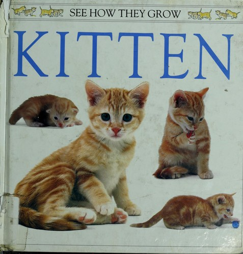 Kitten by Burton, Jane., Jane Burton