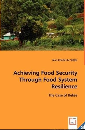 Achieving food security through food system resilience by Jean-Charles Le Vallée
