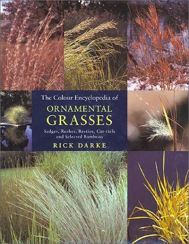 Colour Encyclopedia of Ornamental Grasses by Rick Darke