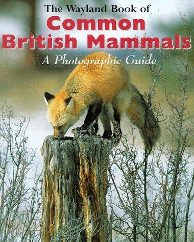 The Wayland Book of Common British Mammals by Shirley Thompson